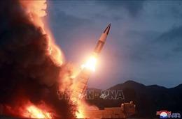 Nhật Bản: Triều Tiên đang phát triển các tên lửa có 'đường bay bất thường'