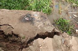 Đi bóc quế bị sạt lở đất, 4 người thương vong