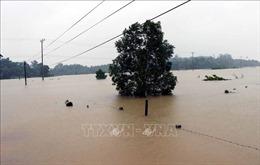Thêm hai người bị mắc kẹt trong rừng do mưa lũ đã về nhà