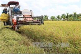 Đồng Tháp tập trung đào tạo nguồn lực cho các xã xây dựng nông thôn mới