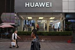 Mỹ buộc tội một giáo sư Trung Quốc đánh cắp công nghệ cho Huawei