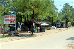 UBND tỉnh Quảng Ninh chỉ đạo thanh tra, xử lý dứt điểm việc xâm lấn đất rừng làm du lịch ở Uông Bí