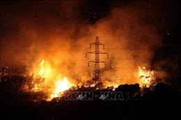 Cháy rừng lan nhanh gần thủ đô Athens của Hy Lạp