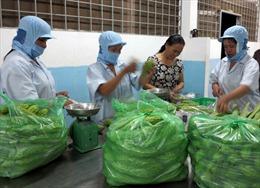 Hàng nghìn hộ nông dân giỏi ở Bình Định thành lập doanh nghiệp