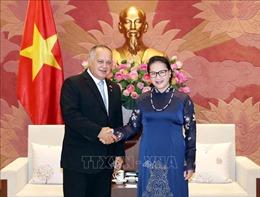 Chủ tịch Quốc hội Nguyễn Thị Kim Ngân tiếp Đoàn Đảng XHCN Thống nhất Venezuela