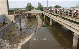 Vận hành xả đập kiểm soát lũ sông Cửu Long và vùng Tứ Giác Long Xuyên