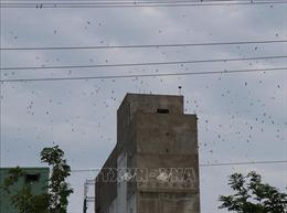 Cử tri Bình Thuận kiến nghị giải quyết nhiều vấn đề bức xúc chưa được giải quyết