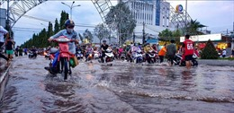 Nước nổi thấp, triều cường cao: Những thách thức đặt ra cho ĐBSCL
