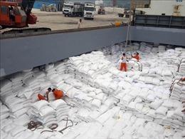 Nguyên nhân giá gạo Việt Nam thấp nhất trong 12 năm qua