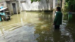 Xóm 'nước nổi' giữa lòng thành phố Đồng Xoài, Bình Phước