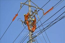 Thêm trên 1.200 hộ dân Bình Định được cung cấp điện trực tiếp