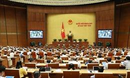 Kỳ họp thứ 8, Quốc hội khóa XIV: Đổi mới công tác xây dựng, quản lý đội ngũ cán bộ, công chức, viên chức