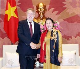 Thúc đẩy quan hệ hữu nghị, hợp tác giữa Quốc hội Việt Nam và EP