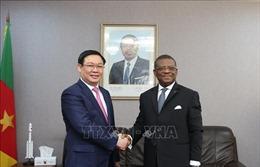 Phó Thủ tướng Vương Đình Huệ thăm, làm việc tại Cameroon