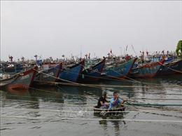 Thừa Thiên - Huế cấm tàu thuyền ra khơi từ ngày 8/11