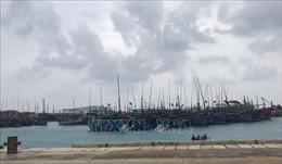 Ứng phó bão số 6, Khánh Hòa xả nước điều tiết lũ tại các hồ chứa