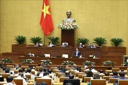 Hôm nay 11/11, Quốc hội biểu quyết một Nghị quyết, thảo luận hai dự án Luật