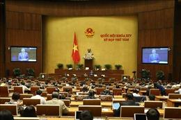 Quốc hội nghe trình và thảo luận tại tổ 4 dự án luật