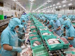 Dịch COVID-19: Ngành thủy sản 'cầm cự' chờ thị trường khôi phục