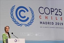 Nhà hoạt động Greta Thunberg kêu gọi hành động thực chất chống biến đổi khí hậu