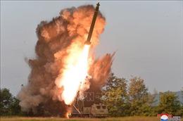 Chuyên gia Mỹ hạ thấp khả năng Triều Tiên thử hạt nhân trong tương lai gần