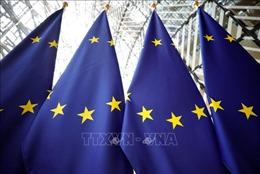 Cuộc họp trực tiếp đầu tiên của lãnh đạo châu Âu bàn về khủng hoảng dịch COVID-19