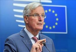 Vấn đề Brexit: Trưởng đoàn đàm phán EU cảnh báo về những 'thiệt hại'