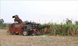 Khởi sắc nông thôn mới vùng căn cứ cách mạng KBang