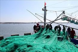 Quảng Trị: Gần 13 tỷ đồng hỗ trợ ngư dân vươn khơi