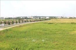 TP Hồ Chí Minh kiến nghị chuyển đổi chức năng gần 385 ha đất dự trữ phát triển