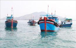 Lập Ủy ban Quốc gia thực hiện Chiến lược phát triển bền vững kinh tế biển Việt Nam