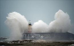 Giao thông 'tê liệt', hàng trăm chuyến bay bị hủy do bão Ciara
