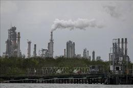 EIA hạ dự báo tăng trưởng nhu cầu dầu toàn cầu do dịch COVID-19