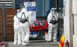 WHO tuyên bố dịch bệnh đang trở nên nghiêm trọng hơn