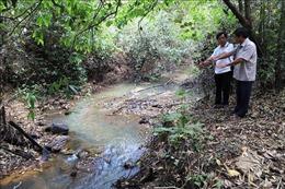 Tây Ninh: Gian nan phòng, chống cháy rừng mùa khô