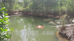 Ngã xuống hồ nước, hai em gái tử vong thương tâm