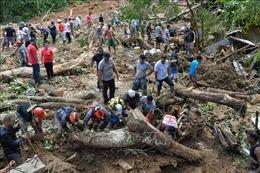 Số người thiệt mạng do mưa lũ tại Brazil lên tới 40 người