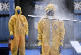 Brazil đã có 6.836 ca dương tính với virus SARS-CoV-2