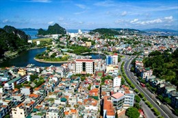 Việt Nam với hành trình xây dựng thành phố bền vững về môi trường