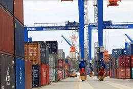 Hàng hóa qua cảng biển duy trì đà tăng trưởng