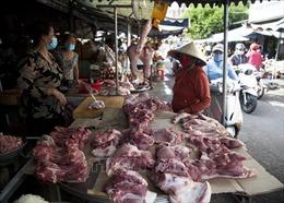 Chênh lệch lớn giá lợn bán ra trong dân và công ty chăn nuôi