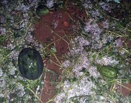 Mưa đá, dông lốc làm hư hỏng nhà ở và công trình công cộng ở Lào Cai