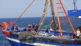 Liên tiếp bắt giữ tàu giã cào khai thác thủy sản trái phép
