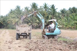 Người dân ồ ạt bán đất mặt ruộng mặc hệ lụy ảnh hưởng đến cây trồng