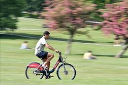 Chính phủ Anh khuyến khích người dân đạp xe và đi bộ