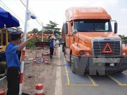 Phát hiện 9 xe tải hạng nặng chở quá tải, một lái xe dương tính với ma túy