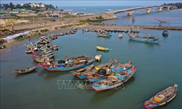 Khắc phục 'thẻ vàng' IUU: Xử lý tàu cá không cập, rời cảng chỉ định