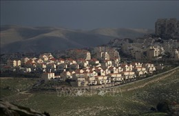 HĐBA thảo luận vấn đề lãnh thổ Palestine bị Israel chiếm đóng