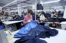 Truyền thông Nhật Bản: EVFTA giúp Việt Nam trở thành điểm đến đầu tư mới