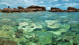 Du lịch Phú Quốc khẳng định thương hiệu - Bài 2: Hoàn thiện nhiều sản phẩm du lịch đẳng cấp